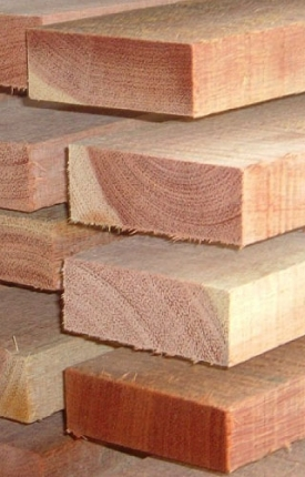 Meranti - Tip Top Timber - Sustainable Forest Products